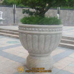 Chau-da-tu-nhien-trong-cay-cd021