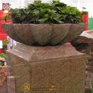 Chau-da-tu-nhien-trong-cay-cd027