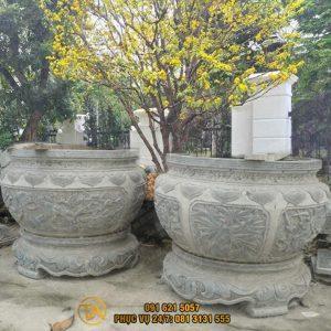 Chau-da-tu-nhien-trong-cay-cd048