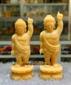 Ban-tuong-phat-dan-sanh-tpds08