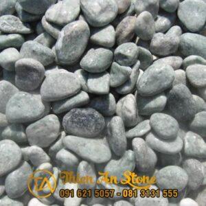Soi-xanh-reu-1-2cm-sctn27
