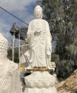 Tuong-adida-tpadd14