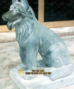 Tuong-cho-bang-da-vang-ca-rot-tcdd13