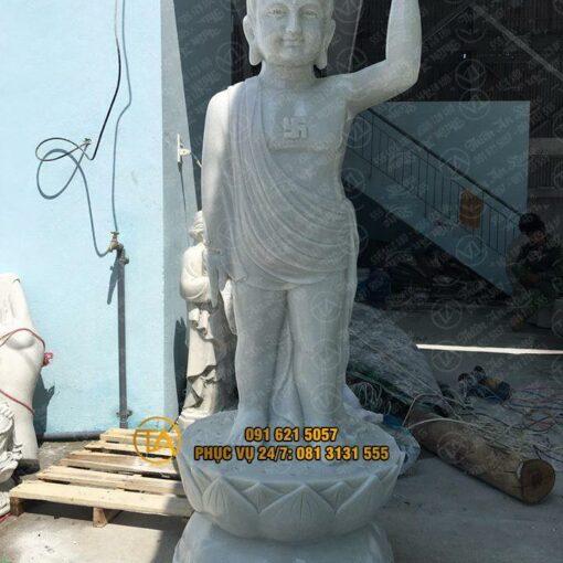 Tuong-phat-dan-sanh-tpds01