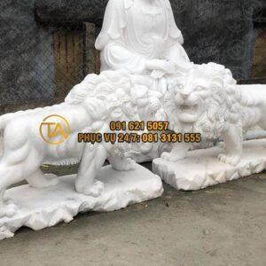 Tuong-su-tu-da-cao-cap-tstd20