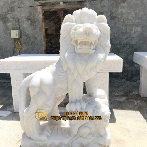 Tuong-su-tu-gia-re-tstd22