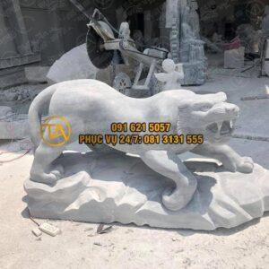 Tuong-su-tu-nguyen-khoi-tstd19
