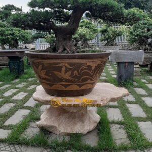 Don Da Ke Cay Canh Thien An Stone
