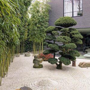 Sân Vườn Trước Nhà